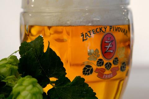 Zatec Bier, Brauerei, glutenfrei, Pilsner, czech beer, tschechisches bier,